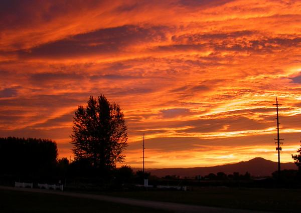 sunrise20014-m